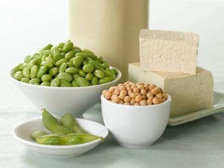 Protein Diet For Vegetarians Bootcamp Chennai